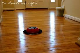 cleaning bamboo floors with steam mop meze