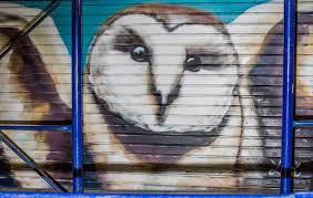 Barn Murals Cdn Audubon Org Cdn Farfuture Dxma9wgwlk18yca Nkva