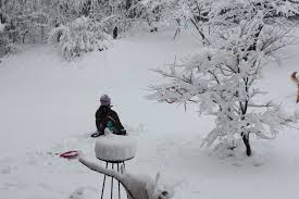 we sure got a lot of snow for thanksgiving 2014 in new hshire