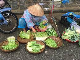 cours de cuisine vietnamienne cours de cuisine vietnamienne à hoi an la grande tournée