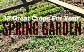 what is spring what grows in spring 12 crops for your vegetable garden u2013 farm