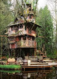 three house the treehouse that nobody wanted