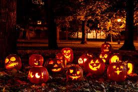 pumpkins cause climate change says energy dept jackolanterns