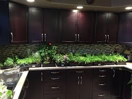 under cabinet grow light fresh under cabinet grow light brilliant ideas lighting lighting ideas