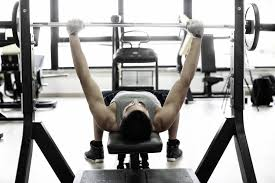 Bench Press For Size Bench Workout Bench Alternative Professional Deck Workout Bench