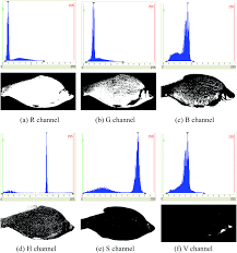 a data fusion detection method for fish freshness based on