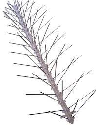amazon com bird x stainless steel bird spikes kit covers 10