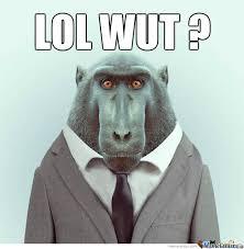 Ape Meme - lol wut ape by jim ivanov meme center