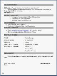 Best Engineering Resumes by Resume Format Pdf For Freshers Latest Professional Resume Formats