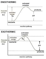dr will mccarthy u0027s science site endothermic vs exothermic