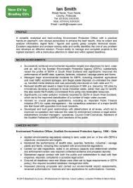 examples of resumes 11 good samples professional resume template
