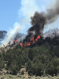 holcomb fire grows power restored to big bear big bear valley
