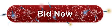 holiday auction 2017