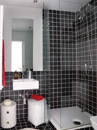 Very Small Apartment Design Ideas - Designs for very small bathrooms