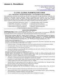 it consultant resume 6 it consultant resume sle laredo roses throughout resumes