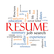 Best Resume Assistance by Succinct Resume Free Resume Example And Writing Download