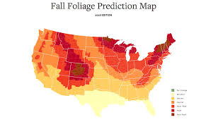 interactive foliage plan fall trips