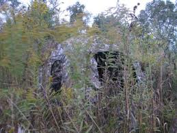 Natural Hunting Blinds Pros And Cons Of Ground Blinds Scattershooting Prairie State