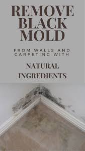 Black Mold On Concrete Basement Walls Best 20 Remove Black Mold Ideas On Pinterest Shower Mold