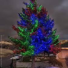 orbit evergreen landscape lighting orbit evergreen outdoor lighting wrapping trees with lights on