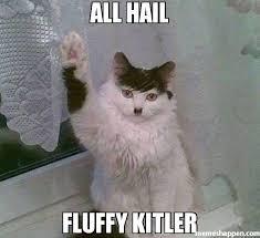 Hail Meme - all hail fluffy kitler meme fluffy kitler 26045 memeshappen