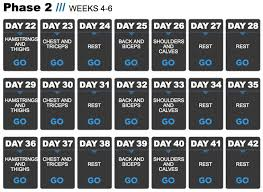 daily weekly gym bodybuilding plan schedule template excel