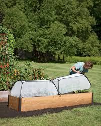growing cucumbers trellises fertilizer more gardeners com