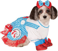 the wizard of oz wizard costume wizard of oz dorothy pet costume walmart com