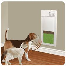cat doors for glass doors accessories fascinating doggy doors with power pet door medium