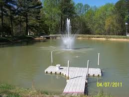 1 2 acre pond in the country stocked with fish small sandy beach