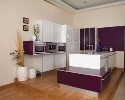 purple kitchen decorating ideas kitchen view purple modular kitchen decorating ideas photo and