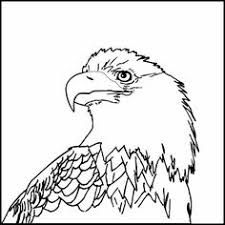 free printable eagle image for shirt free printable bald eagle
