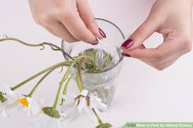 How To Revive Flowers In A Vase 3 Ways To Perk Up Wilting Flowers Wikihow
