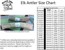amazon com happy dog of cape cod whole elk antler pet snack