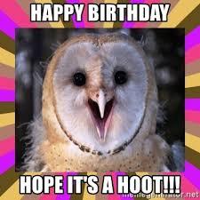 Happy Birthday Owl Meme - happy birthday hope it s a hoot happy birthday owl meme