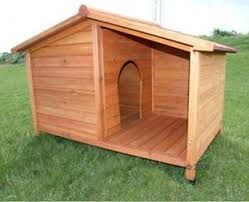 best 25 insulated dog kennels ideas on pinterest insulated dog