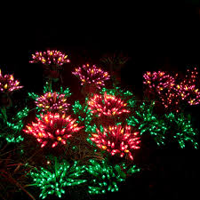 Bellevue Botanical Garden Lights Bellevue Botanical Garden Bellevue Washington The Flower Garden