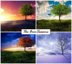 the four seasons by emerald depths on deviantart