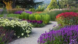 Pictures Of Garden Flowers by Flower Garden Backgrounds Wallpaper Cave