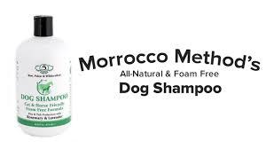 morrocco method all natural dog shampoo youtube