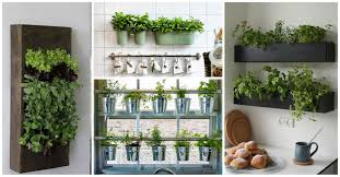 12 brilliant indoor herb gardens