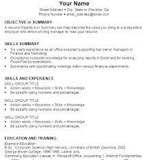 summary for resume professional summary for resume exles of resume summary