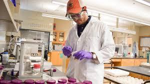 pilgrim pride employment auburn poultry science careers