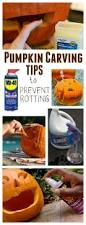 best 20 carving pumpkins ideas on pinterest ideas for pumpkin