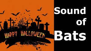 bat sounds for halloween sound effect vampire bats youtube