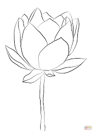 lotus flower coloring page free printable coloring pages