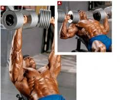 Neutral Grip Incline Dumbbell Bench Press Doing It Better Elbows Flared Edition
