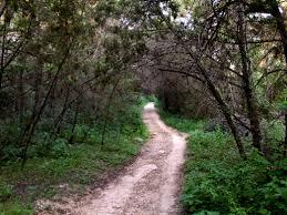 Austin Greenbelt Map by Barton Creek Greenbelt Trail Running