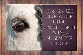 pferde spr che individuelles wandschild 6 mit spruch und bild deinem pferd