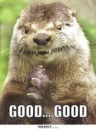 Otter Memes - otter memes funny otter pictures memey com